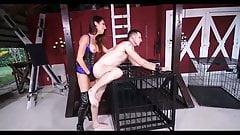female domination fetish dava