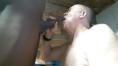 Grandpa on his knees sucking black cock