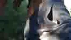 oldman fuck in foreskin maduros follando en el campo