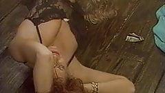 Candy Evans,Peter North,Krista Lane,Ron Jeremy Vintage ORGY