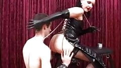 Dominatrix ass worship porn image