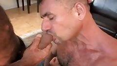Hot gay fuck 006 bareback