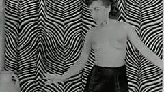 Jolly Zebra Dance