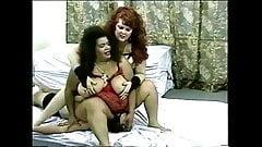BBW BDSM