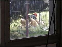 Pillados desde la ventana de casa