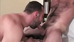 Ebonys Who Love White Cock