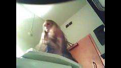 hidden cam - girl without pantie in toilet