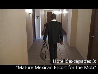 Mature escorts daytona - Mature mexican escort for the mob