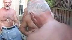 Parti u domu umirovljenika