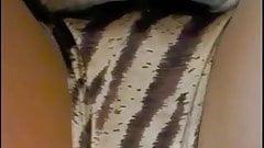 Zebra Panties Nylon Stockings