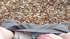 J ejacule en foret I ejaculate in forest on a bench