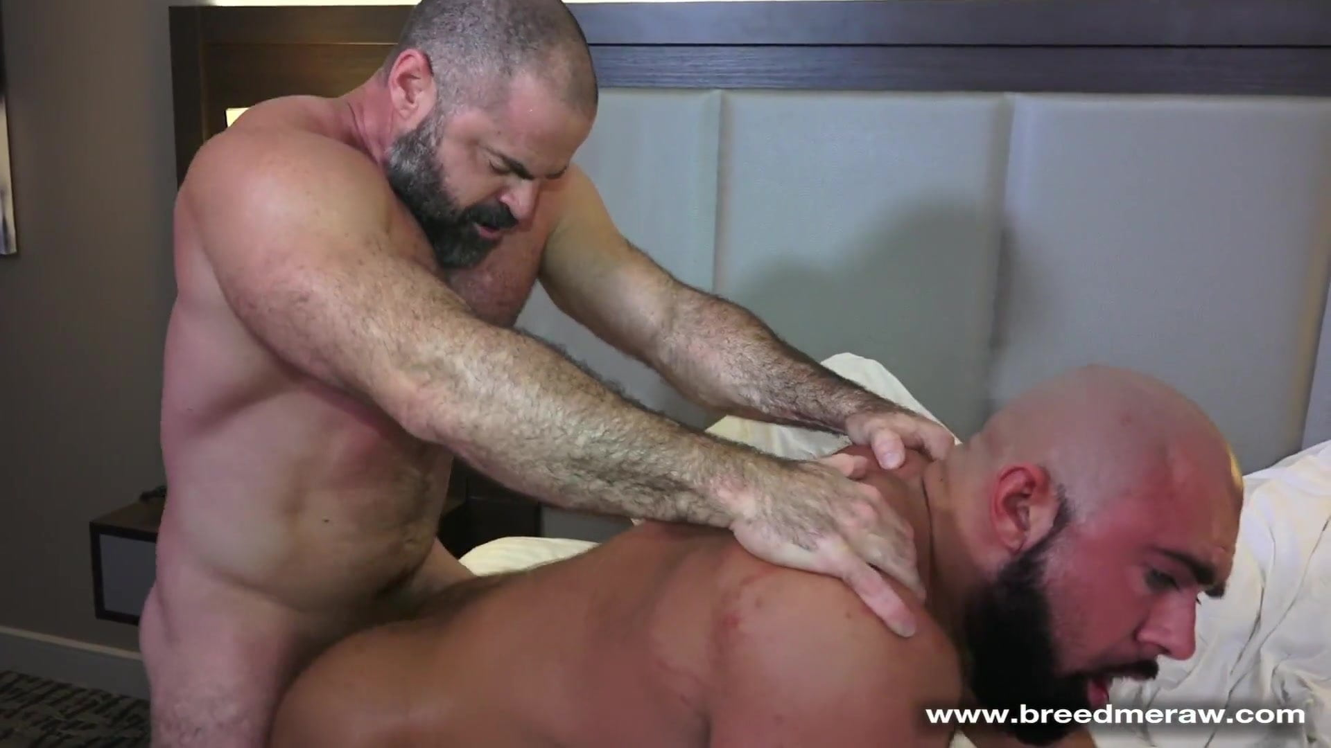 Bear Wood Porn muscle daddy bears gay sex