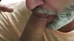 bearded dad sucks cock