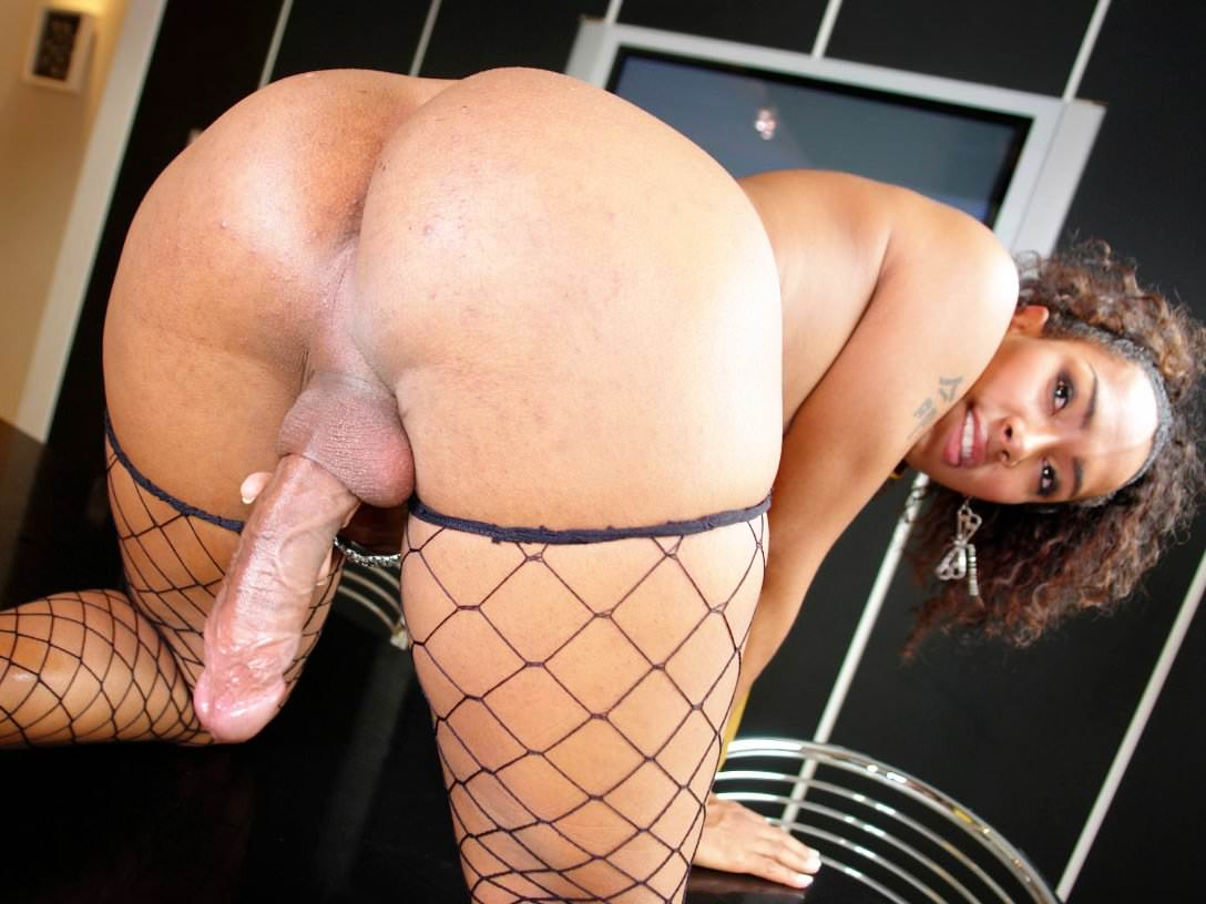 Big ass shemale videos — pic 3